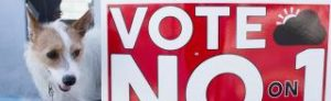 """A puppy and a red sign reading """"Vote No on 1"""""""