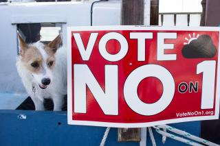 "A puppy and a red sign reading ""Vote No on 1"""