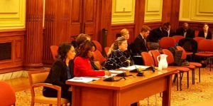 Solar United Neighbors Executive Director Anya Schoolman testifies before the D.C. Council Committee on Transportation & the Environment on Wednesday, December 13, 2017.