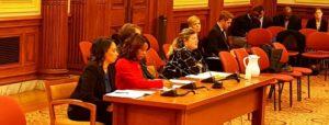 Solar United Neighbors Executive Director Anya Schoolman testifies in favor of solar bills at a D.C. Council hearing on December 13, 2017.