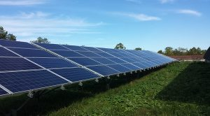 Four rows of solar panels installed above grass